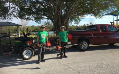 What Makes A Good Lawn Service Business?